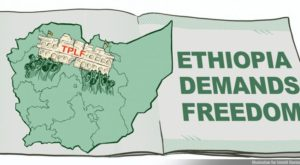 The Untold Plight of the Amhara People- by wondmagegj ejigu
